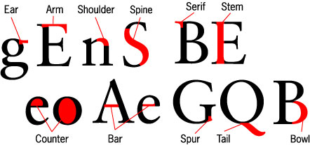 The Language of Letterform